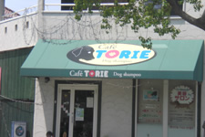 3. TORIEというお店が見えてきます。